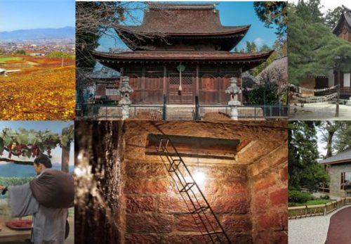 【終了しました】【外国人向け/Foreigner Oriented】日本遺産「葡萄畑が織りなす風景」をめぐるモニターツアー参加者募集中です。
